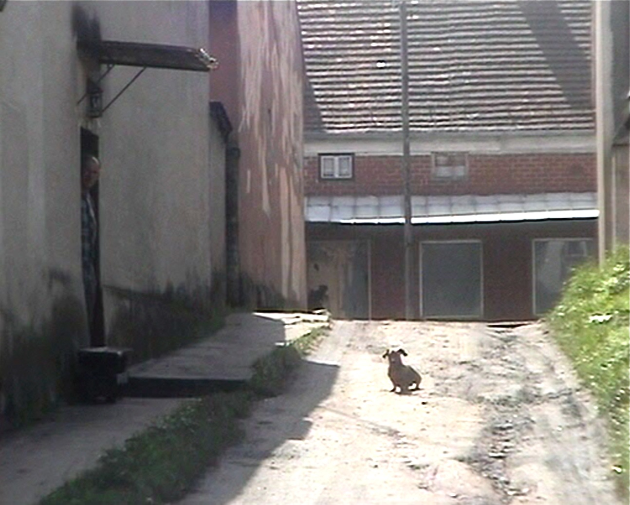 "17 linda bannink ""Skoki"", 2001"
