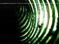 1 Tube-007-2010 003_0001